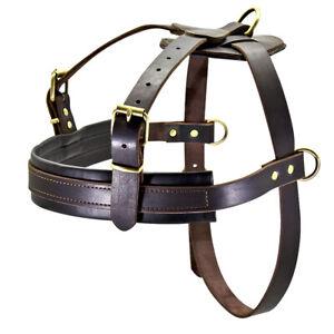 Best Leather Training Working Large Dog Harness Boxer Rottweiler Mastiff XL XXL
