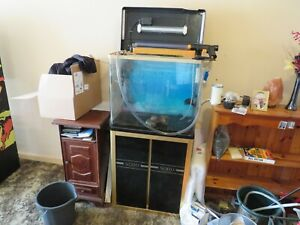 90 Litre Fish Tank with Cabinet and many accessories. Free collection only