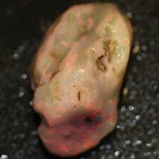 35.9 cts Australian Solid Semi Black Opal Rough Nobby Lightning Ridge