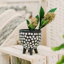 Small Black and White Ceramic Dotty Planter Monochrome