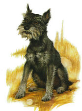 SCHNAUZER ECHARMING  DOG GREETINGS NOTE CARD LOVELY SITTING DOG WITH BALL