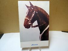 Horse Freckles and and Bridal Postcard
