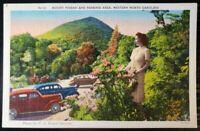 Mount Pisgah North Carolina NC US Forest Service Parking Vintage Postcard (P143)