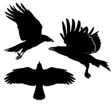 3x Vogelschutz Aufkleber für Wintergarten Fenster Scheibe Verglasung Vögel