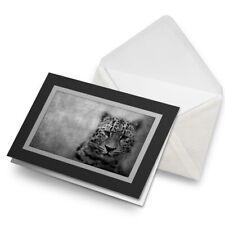 Greetings Card (Black) Bw - Leopard Big Cat Wild Art #40925