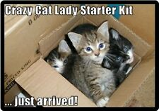 Funny Crazy Cat Lady Starter Kit Just Arrived Refrigerator Magnet