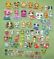 LITTLEST PET SHOP LOT OF 350+ ACCESSORIES 81 PETS INCLUDING TEENSIES & MORE LPS