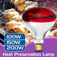 Poultry Heat Incubator Lamp Infrared Bulb Light Reptile Pet