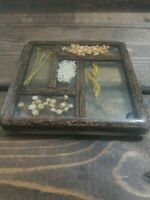 Vintage 70's Acrylic Lucite Pressed Dried Beans & Wheat Footed Trivet Wall Decor