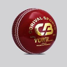 Pack of 6 Alum Tanned Cricket Balls