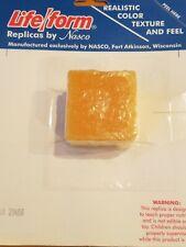 Nasco Cornbread LIFE/FORM FOOD REPLICA NUTRITION TEACHING AIDS WA20488 REALISTIC