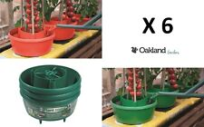 6 X Plant Halos Red Green Watering Halo Ring Tomatoes Grow Bag Tray Cane Support