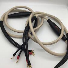 Transparent Audio MusicWave Plus Speaker Cables 8ft Pair