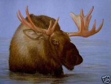 Original Pastel Drawing Bull Moose in Water Porter Family Wildlife Art Deer