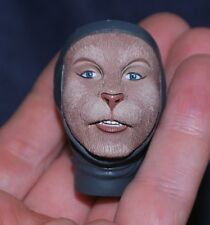 "Cat Girl Head for 1/6 scale 12"" Action Figure Man.Dragon, BBI. CY CG Female (dw)"