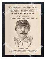 Historic England cricketer Robert Abel 1895 Advertising Postcard