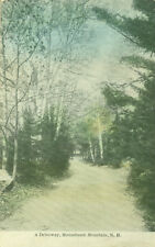 Monadnock Mountain, NH. A driveway through the birches and pines