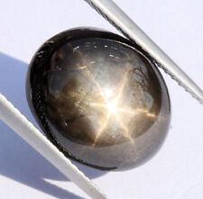 schwarzer   STERNSAPHIR / STARSAPPHIRE / STERNSAFIR   feiner Stern    13,81 ct