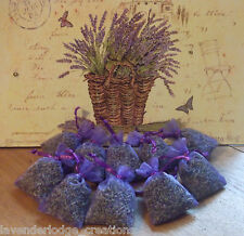 10 Lavender Bags Aromatic, Moth Repellent, Calming, Sleep Aid,Cello Wrapped