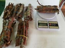 CATAPPA INDIAN ALMOND TREE BARK TUBES  100 gram..FREE SHIPPING & TRACK