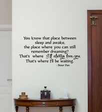 Peter Pan Quote Wall Decal Disney Vinyl Sticker Decor Baby Kids Mural Art 255crt