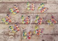 10 Butterfly Flatbacks 10mm Rainbow Resin Cute Craft Cabochons Embellishments
