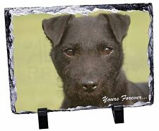 Patterdale Terrier 'Yours Forever' Photo Slate Christmas Gift Ornamen, AD-PT2ySL