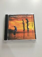 Izzy Stradlin - & the Ju Ju Hounds (1999)