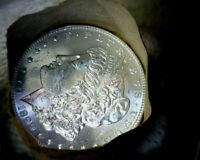 1899-p Blast White Unc Morgan Silver Dollar from a Original Roll Will Grade Out