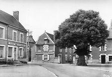 SAVIGNY EN SANCERRE Route de Vailly Bel arbre Félix Potin Hôtel de la Boule d'Or