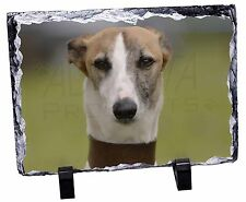 Whippet Dog Photo Slate Christmas Gift Ornament, AD-WH2SL
