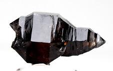 RARE Smoky Quartz MULTI TERMINATED Crystal Cluster Mineral Specimen AUSTRALIA