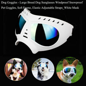 White Mask_Dog Goggles_Large Breed Dog Sunglasses Windproof Snowproof Goggless