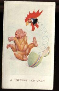 Tobacco Card, Carreras, GRAN POP by Lawson Wood, 1934, #25