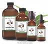 Gymnema (Gymnema Sylvestre) Organic Tincture - 2oz Premium Strength