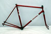 Rossignoli Vintage Touring Road Bike Frame 58cm Large 1970s Italy Steel Charity!