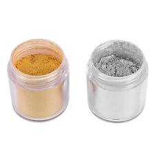 Nail Art Powder Glitter Magic Mirror Chrome Effect Dust Pigment DIY Manicure Kit