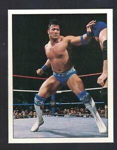 1997 Panini WWF ROCKY MAIVIA THE ROCK  DWAYNE JOHNSON Sticker Wrestling Card 113