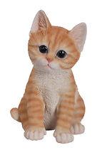 Vivid Arts Pet Pal Cat Kitten CAT-PP-KT37-F