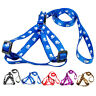 Nylon Cute Paw Print Puppy Dog Strap Harness and Leads Leash Set for Small Dogs