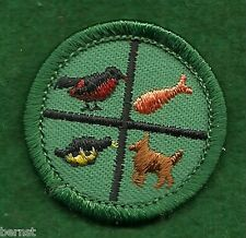 GIRL SCOUT BADGE - PETS - PLASTIC BACK - FREE SHIPPING