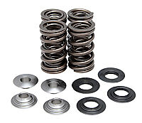 KibbleWhite Lightweight Racing Valve Spring Kit  Raptor 700 06-17 Rhino Grizzly