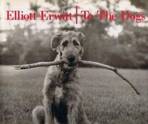 Elliott Erwitt  To the Dogs