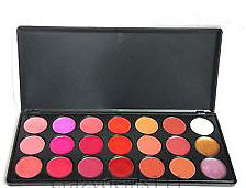 MAC NEW 21 LIP COLOR LIPSTICK PALETTE + MAC 5 PC BRUSH SET..