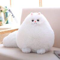 Winsterch Stuffed Cats Plush Animal Toys Animal Baby Doll,White Cat Plush,11.8''