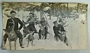 Early 1900's Photograph Group of Deer Hunters Posing on the Backs of Deer 6080