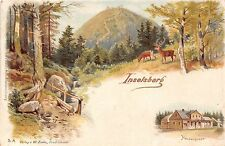 Germany postcard Inselsberg Heuberghaus & woods forest scene ca 190?