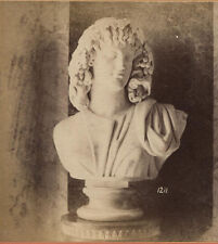 STEREOVIEW STATUE BUST WITH SCARY HAIR.