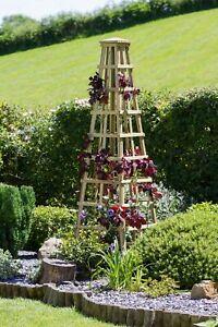 Zest Snowdon wooden garden obelisk. 00614