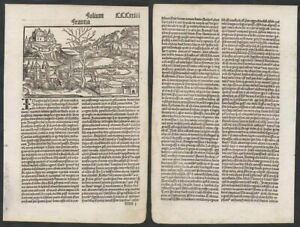 1496 Frankreich France Schedel Chronicle Incunable Inkunabel Holzschnitt woodcut